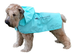 Dog wearing a Roo Rain Gear dog poncho. Rain wear for dogs. Rain gear for dogs. dog rain coat
