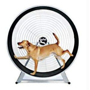 Dog Treadwheel. Roo Rain Gear RPET, dog rain poncho