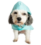 Dog Wearing Roo Rain Gear rain poncho for dogs, RPET dog product